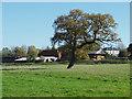 TQ0752 : Upper Hammond's Farm by Alan Hunt