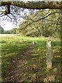 SX8078 : Granite fencepost on the Parke estate by David Smith