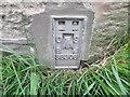 NY3551 : Ordnance Survey Flush Bracket S8306 by Peter Wood
