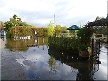 TQ1673 : Outside the White Swan at Riverside, Twickenham by Marathon