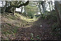 SO1687 : Bridleway below Pant-y-llidiart by Bill Boaden