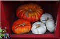 SK7154 : Pumpkins at the Workhouse by Ian Taylor