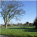 SK7586 : Green space at Top Street by Alan Murray-Rust
