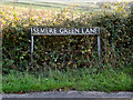 TM1783 : Semere Green Lane sign by Adrian Cable