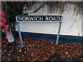 TM1682 : Norwich Road sign by Adrian Cable