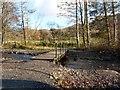 NY2622 : Foot bridge on the Roe Deer Walk by Norman Caesar