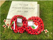 SJ8398 : To Our Italian Comrades by David Dixon