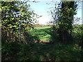 SW8939 : Footpath towards Treworga by JThomas