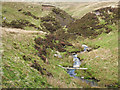 NY8816 : Slope descending to Great Ay Gill by Trevor Littlewood