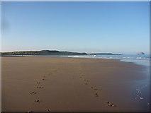 NT6281 : Coastal East Lothian : Ravensheugh Sands, Tyninghame by Richard West