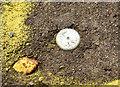 J3473 : Survey mark near the Albert Bridge, Belfast (November 2014) by Albert Bridge