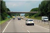 SK1433 : Westbound A50, Flacket's Lane Bridge by David Dixon
