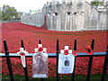 TQ3380 : Poppies at The Tower of London #10 by Richard Humphrey