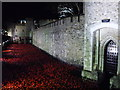 TQ3380 : Poppies at The Tower of London #15 by Richard Humphrey