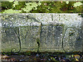 SK7390 : Inscribed stone, the Horsewell, Gringley by Alan Murray-Rust