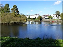 TQ1673 : Canoeists approach the east end of  Eel Pie Island by Russel Wills
