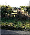 SJ2934 : Old Chirk Road stile to a public footpath north of Gobowen by Jaggery