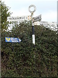 TM1781 : Roadsign on Common Road by Adrian Cable