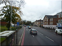 TQ3060 : Reedham:  Brighton Road by Dr Neil Clifton