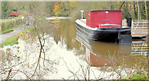 J3369 : Restored canal barge, Belfast (November 2014) by Albert Bridge