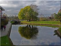 SO8453 : Worcester & Birmingham Canal - Diglis by Chris Allen