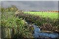 SJ4195 : Croxteth Brook by Ian Greig