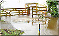 J3067 : Flooded towpath, Drumbeg, Dunmurry - November 2014(2) by Albert Bridge