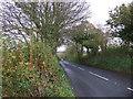 SX2957 : A387 near Tredinnick Lane-end by JThomas