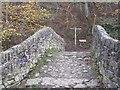 NT3337 : Cuddy Bridge, Innerleithen by M J Richardson