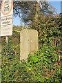 SX7976 : Direction post, Woodhouse Cross by Derek Harper