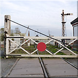 TF3243 : Level crossing on the Boston Docks branch by Alan Murray-Rust