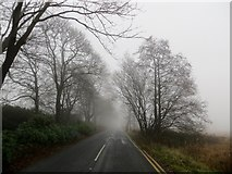 SD6715 : Rivington Road on a misty autumn morning by Philip Platt