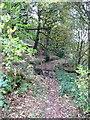 SD9927 : Hebden Royd FP17 entering Royd Wood by Humphrey Bolton