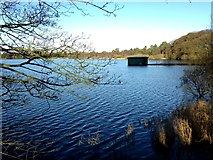 H5776 : Boathouse, Loughmacrory Lough by Kenneth  Allen