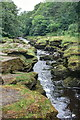 SE0656 : The Strid by Mick Garratt