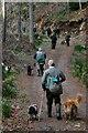 NJ0451 : Keepers 'n beaters 'n dogs 'n guns.... by Des Colhoun