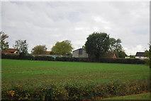 TG0907 : Grove Farm by N Chadwick