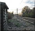 TL4749 : Birmingham train at Sawston Level Crossing by John Sutton