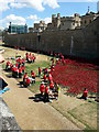 TQ3380 : Volunteers Planting the Poppies by Tony Atkin