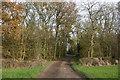 SK7589 : Beckingham Wood by Graham Hogg