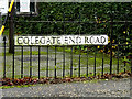 TM1986 : Colegate End Road Sign by Adrian Cable