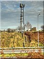 SD5416 : Telecoms Mast next to the M6 Motorway by David Dixon