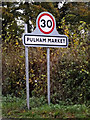 TM1985 : Pulham Market Village Name sign by Adrian Cable