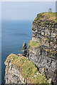 R0392 : Cliffs of Moher by Ian Capper
