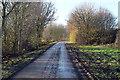 TF2785 : Muddy lane towards North Farm by J.Hannan-Briggs