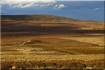 NH9632 : Moorland south of Lochindorb by Richard Webb