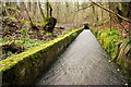 SO6113 : Concrete Trough of the Cannop Brook by Nigel Mykura