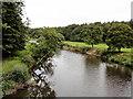 SS4721 : A River and it's Flood Plain by Tony Atkin