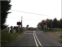 TM1278 : Crossing Road, Palgrave by Adrian Cable