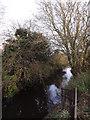 TM1179 : River Waveney at Denmark Bridge by Adrian Cable
